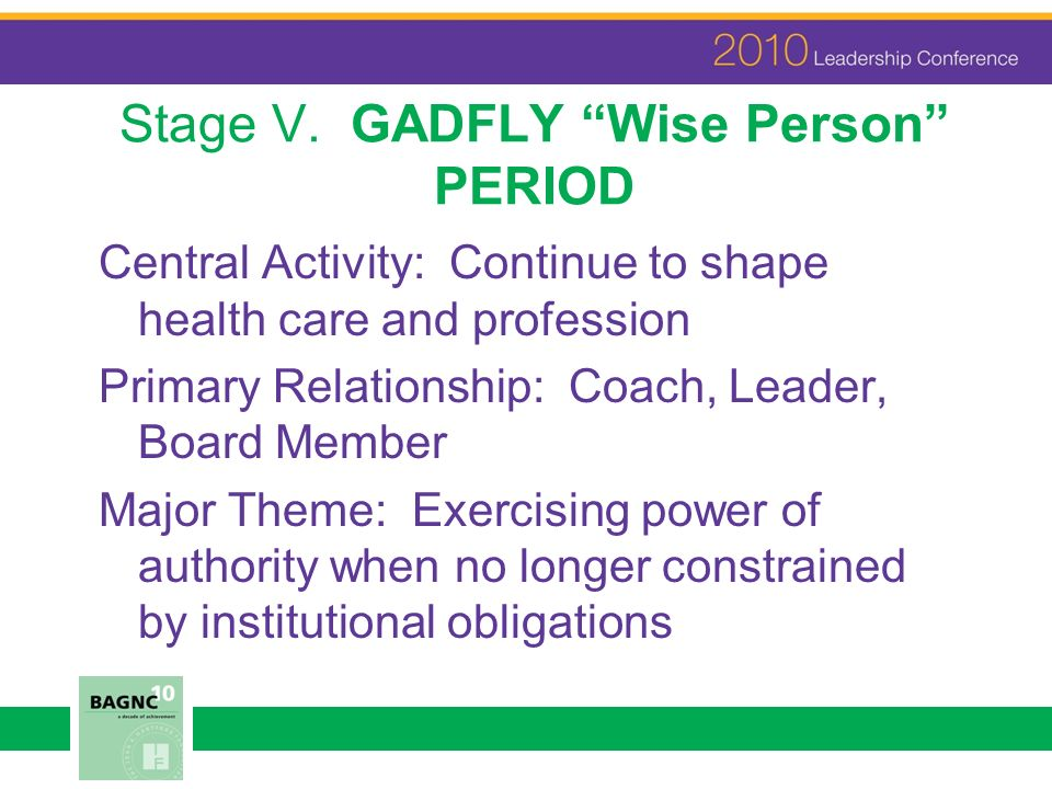 Stage V. GADFLY Wise Person PERIOD Central Activity: Continue to shape health care and profession Primary Relationship: Coach, Leader, Board Member Ma