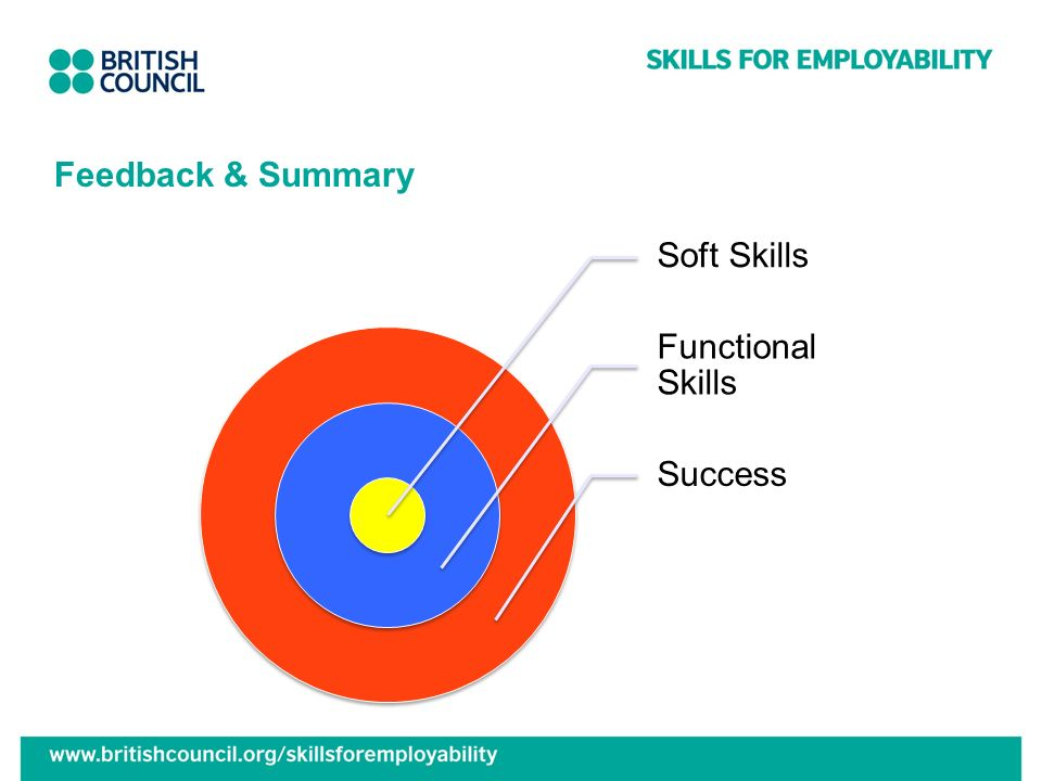 Feedback & Summary Soft Skills Functional Skills Success