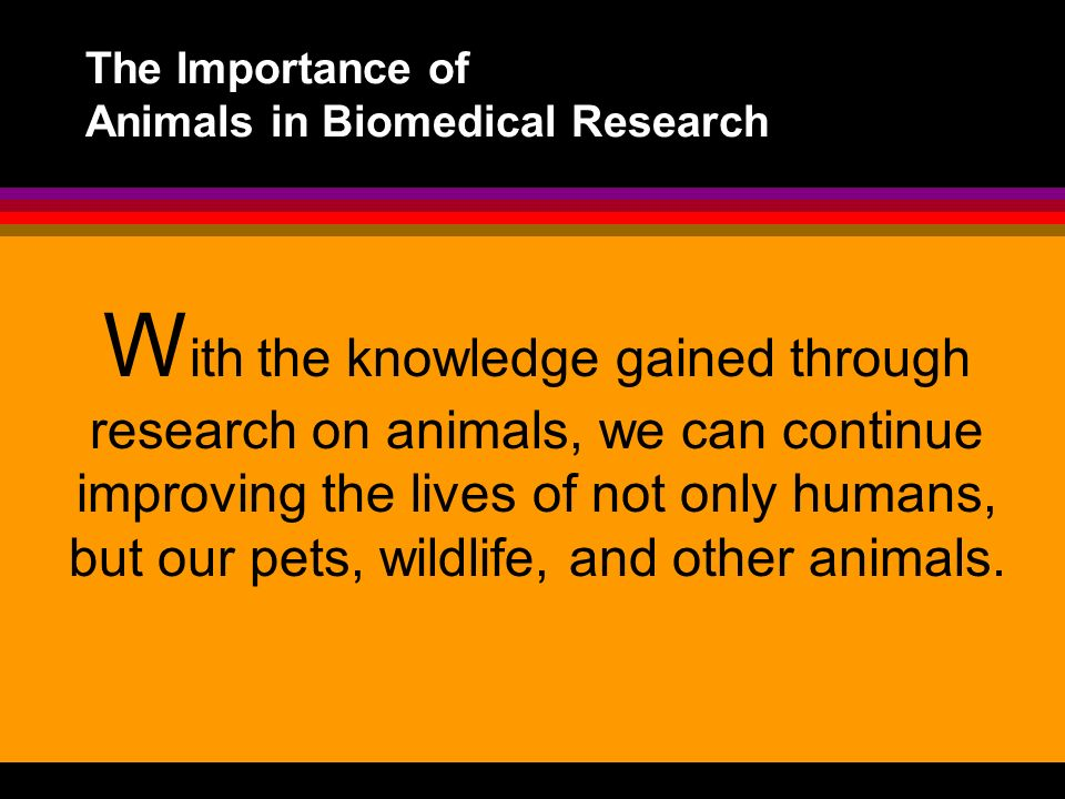 The Importance of Animals in Biomedical Research W ith the knowledge gained through research on animals, we can continue improving the lives of not on