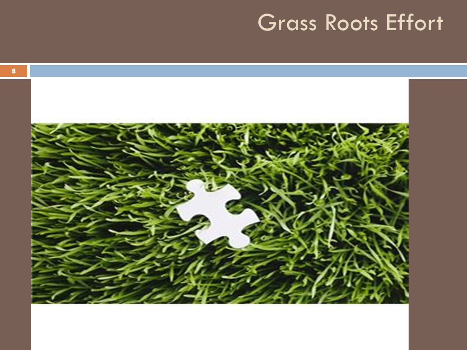 Grass Roots Effort 8