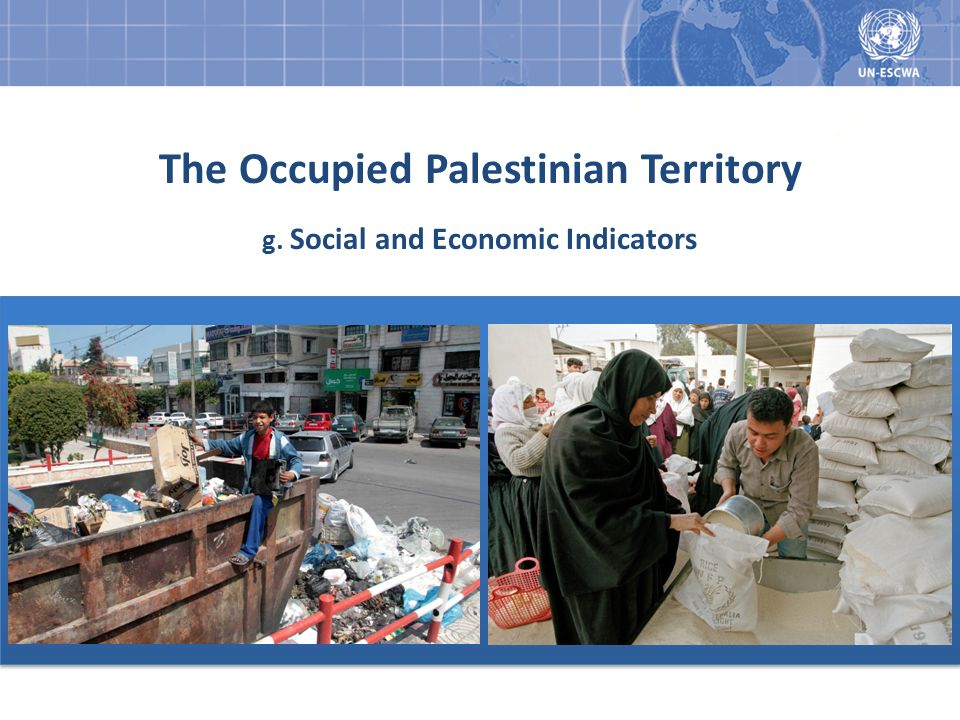 The Occupied Palestinian Territory g. Social and Economic Indicators