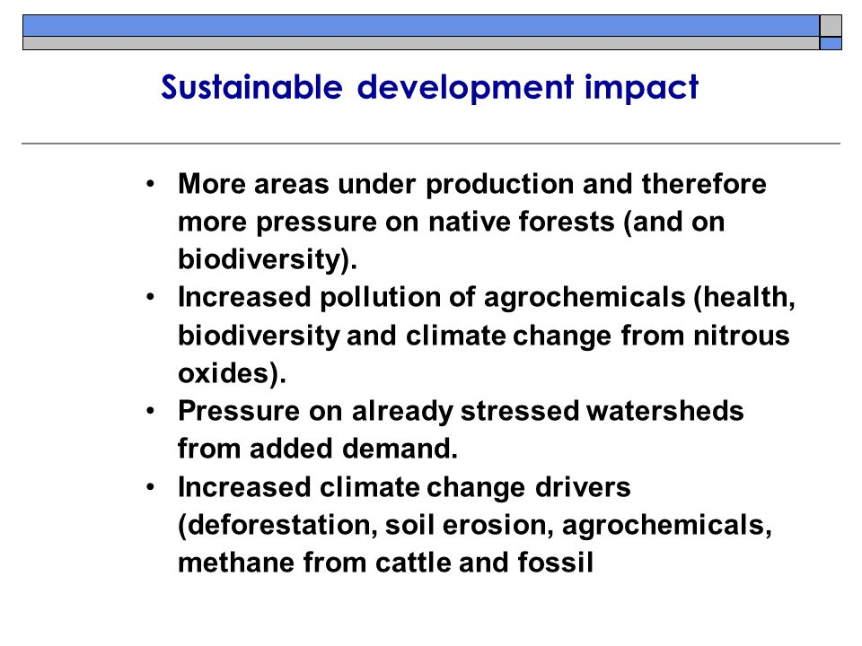 More areas under production and therefore more pressure on native forests (and on biodiversity).