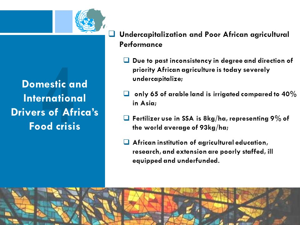 Undercapitalization and Poor African agricultural Performance Due to past inconsistency in degree and direction of priority African agriculture is today severely undercapitalize; only 65 of arable land is irrigated compared to 40% in Asia; Fertilizer use in SSA is 8kg/ha, representing 9% of the world average of 93kg/ha; African institution of agricultural education, research, and extension are poorly staffed, ill equipped and underfunded.