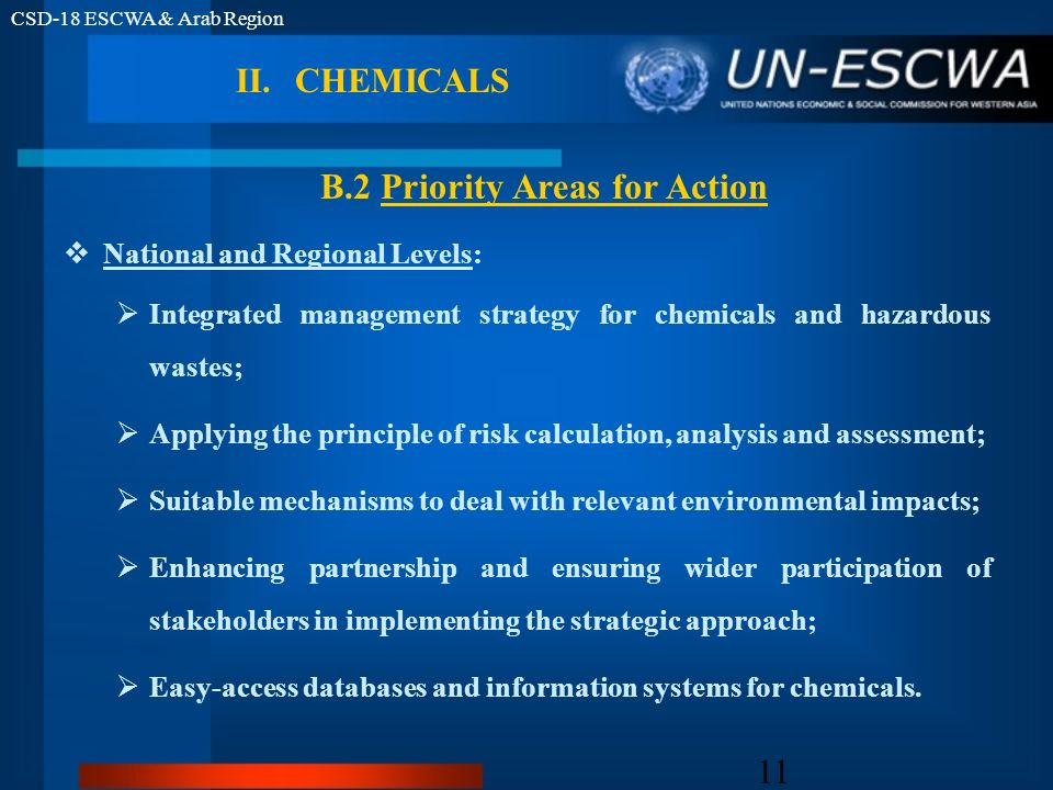 CSD-18 ESCWA & Arab Region 11 National and Regional Levels: Integrated management strategy for chemicals and hazardous wastes; Applying the principle
