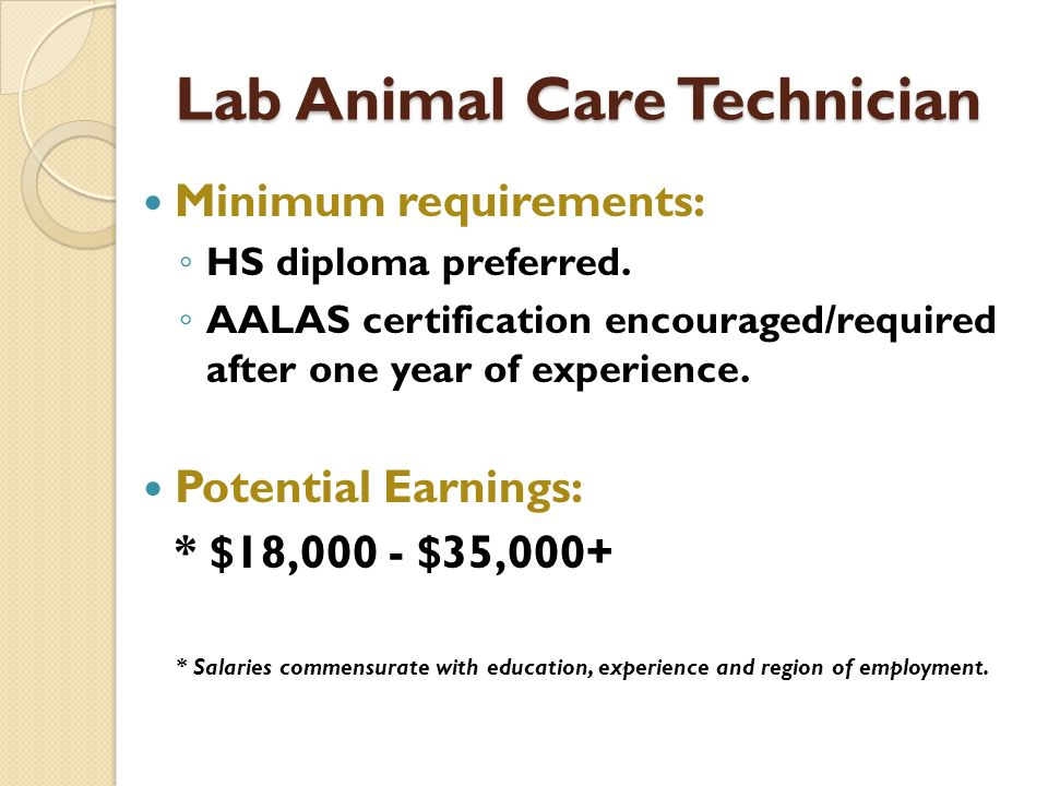 Lab Animal Care Technician Minimum requirements: HS diploma preferred.