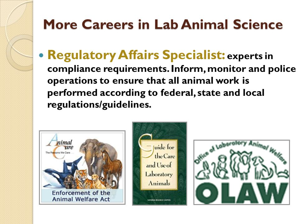 Regulatory Affairs Specialist: experts in compliance requirements. Inform, monitor and police operations to ensure that all animal work is performed a
