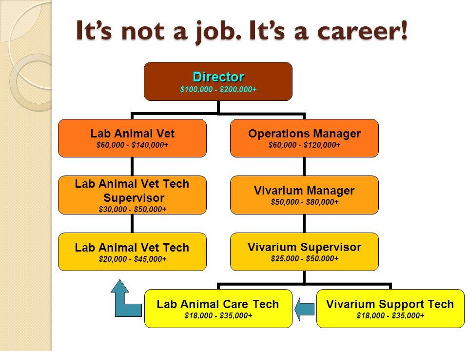 Its not a job. Its a career!