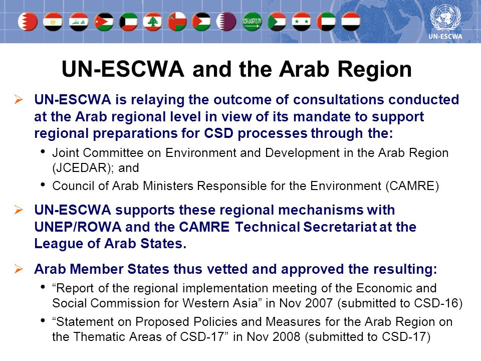 UN-ESCWA is relaying the outcome of consultations conducted at the Arab regional level in view of its mandate to support regional preparations for CSD