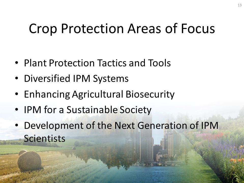 Crop Protection Areas of Focus Plant Protection Tactics and Tools Diversified IPM Systems Enhancing Agricultural Biosecurity IPM for a Sustainable Society Development of the Next Generation of IPM Scientists 13
