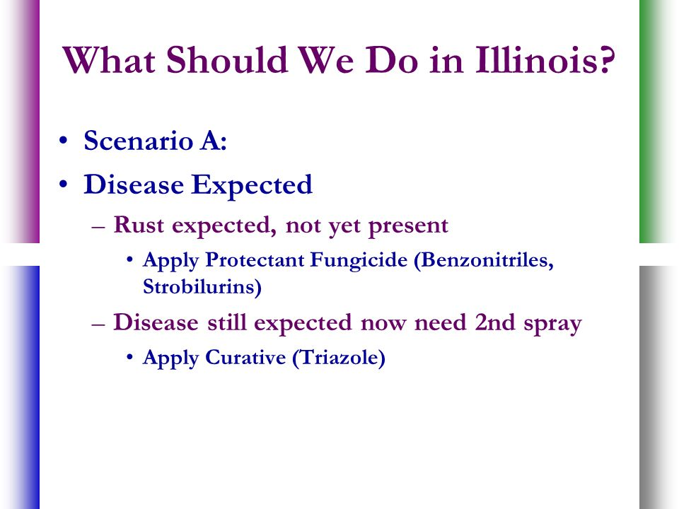 What Should We Do in Illinois? Scenario A: Disease Expected –Rust expected, not yet present Apply Protectant Fungicide (Benzonitriles, Strobilurins) –
