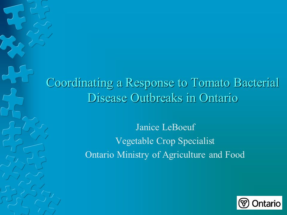 Coordinating a Response to Tomato Bacterial Disease Outbreaks in Ontario Janice LeBoeuf Vegetable Crop Specialist Ontario Ministry of Agriculture and Food