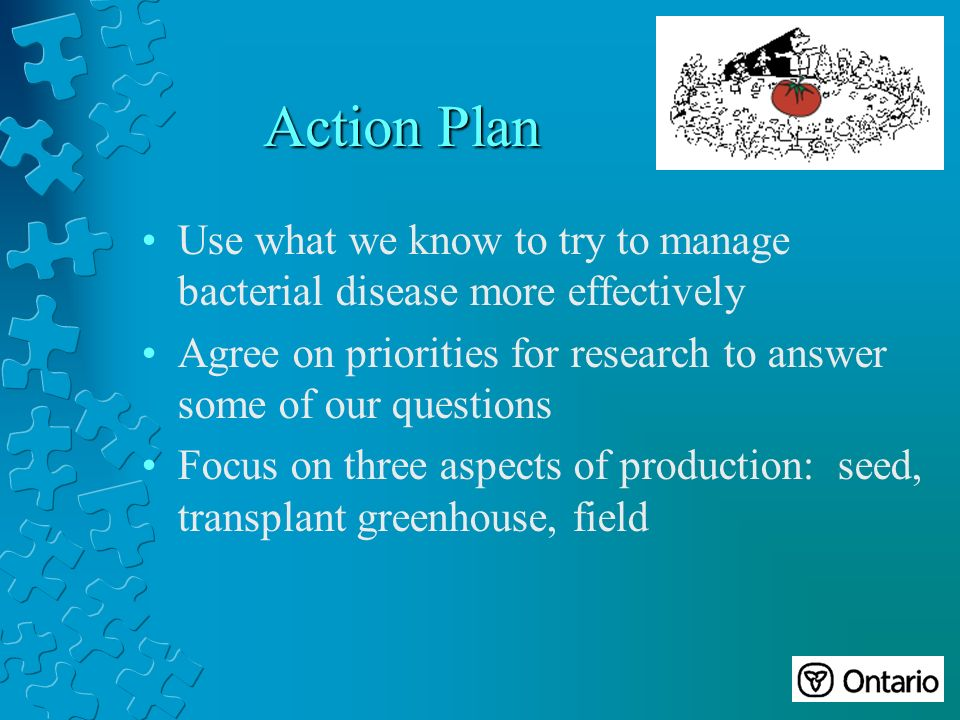 Action Plan Use what we know to try to manage bacterial disease more effectively Agree on priorities for research to answer some of our questions Focus on three aspects of production: seed, transplant greenhouse, field