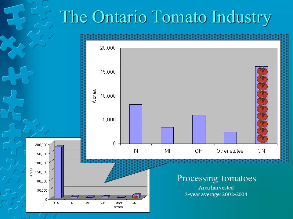 The Ontario Tomato Industry Area harvested 3-year average: 2002-2004 Processing tomatoes