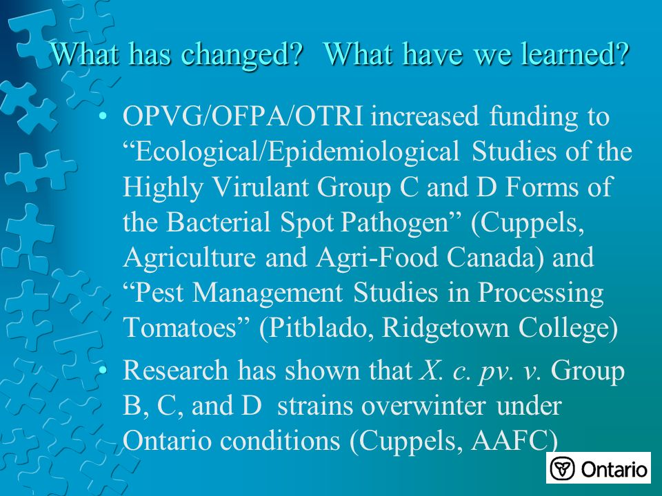 OPVG/OFPA/OTRI increased funding to Ecological/Epidemiological Studies of the Highly Virulant Group C and D Forms of the Bacterial Spot Pathogen (Cuppels, Agriculture and Agri-Food Canada) and Pest Management Studies in Processing Tomatoes (Pitblado, Ridgetown College) Research has shown that X.