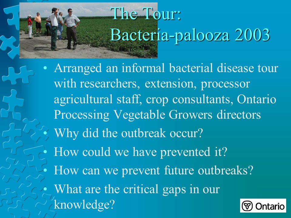 The Tour: Bacteria-palooza 2003 Arranged an informal bacterial disease tour with researchers, extension, processor agricultural staff, crop consultants, Ontario Processing Vegetable Growers directors Why did the outbreak occur.