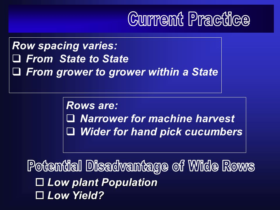 Row spacing varies: From State to State From grower to grower within a State Rows are: Narrower for machine harvest Wider for hand pick cucumbers oLow plant Population oLow Yield?