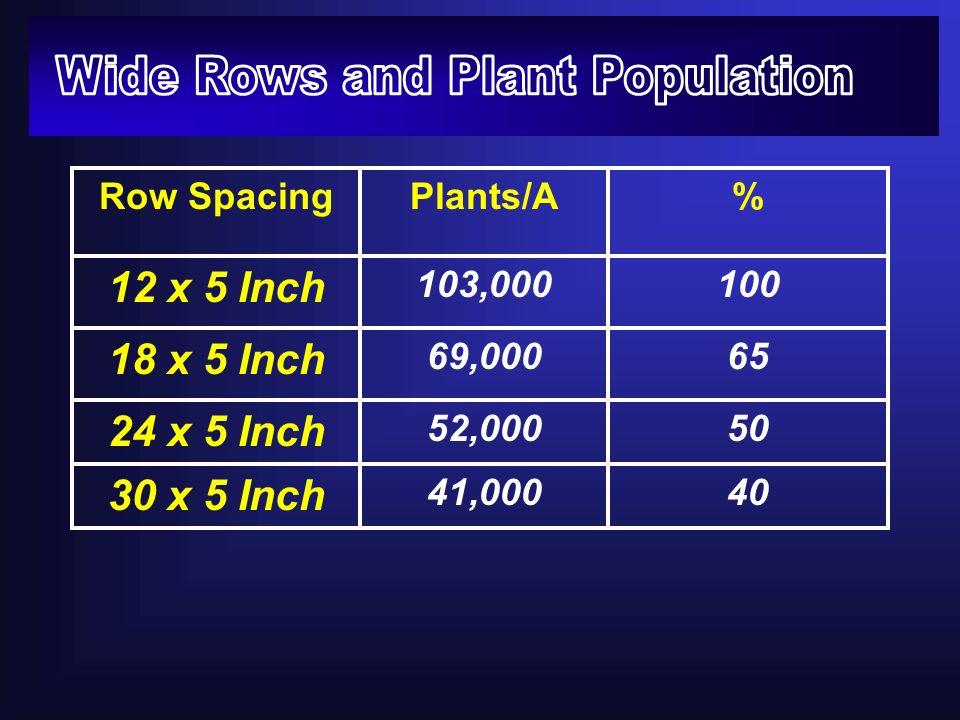 Row SpacingPlants/A% 12 x 5 Inch 103,000100 18 x 5 Inch 69,00065 24 x 5 Inch 52,00050 30 x 5 Inch 41,00040