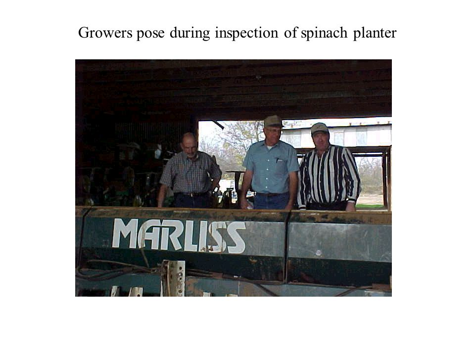 Growers pose during inspection of spinach planter