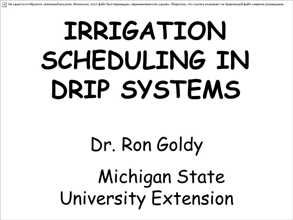 IRRIGATION SCHEDULING IN DRIP SYSTEMS Dr. Ron Goldy Michigan State University Extension