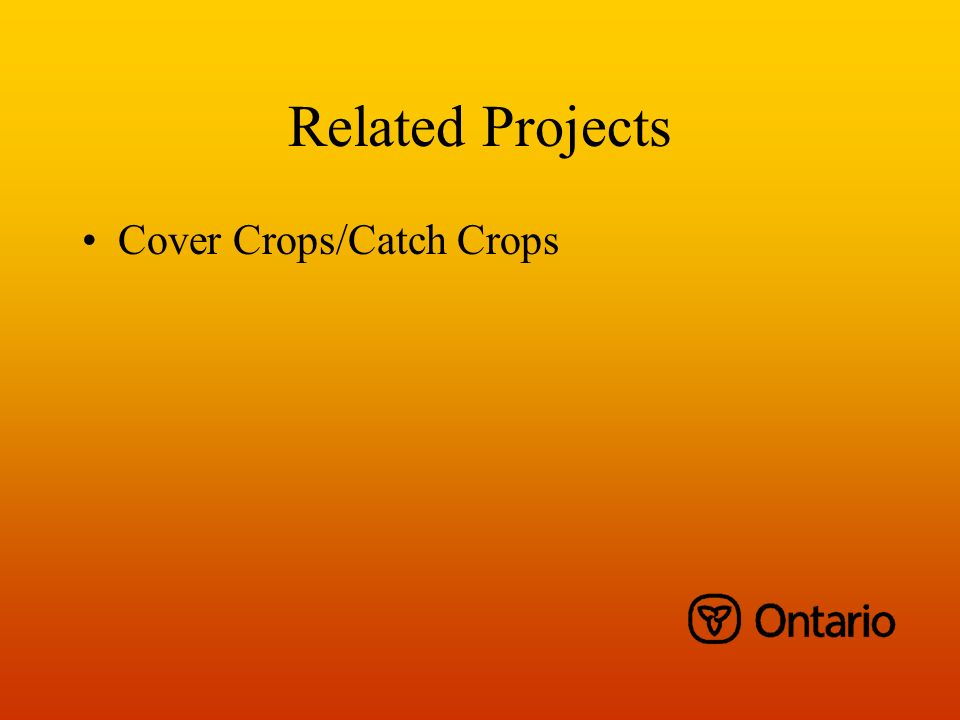Related Projects Cover Crops/Catch Crops
