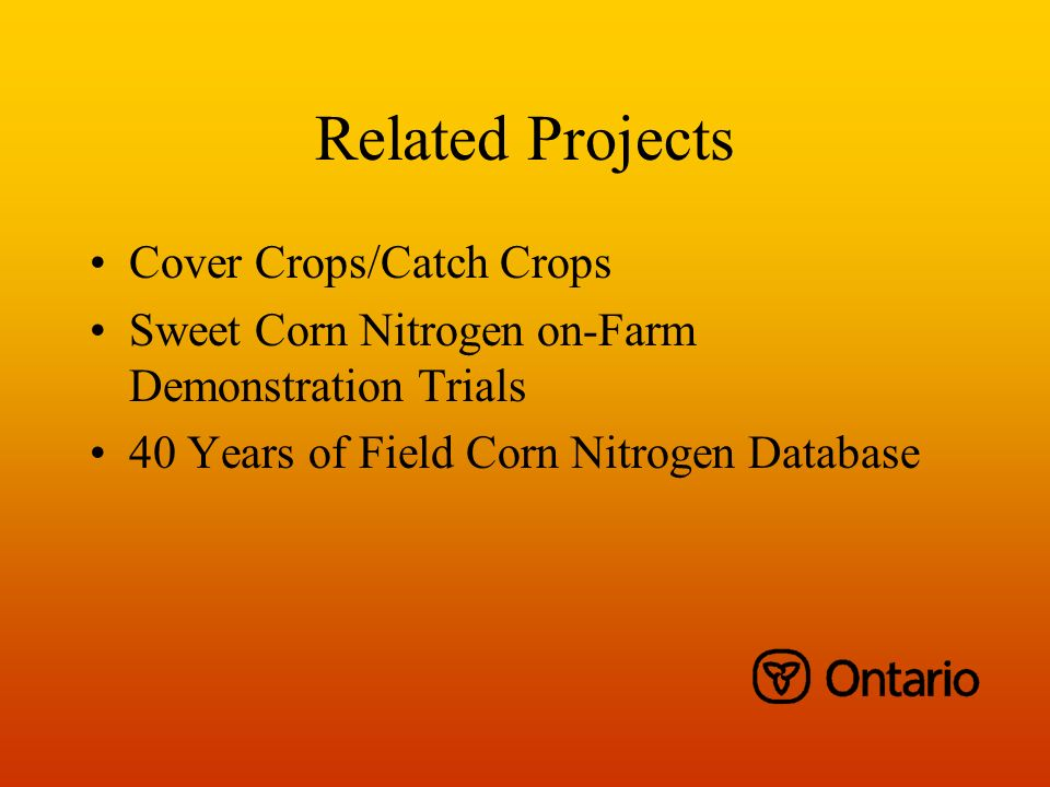 Related Projects Cover Crops/Catch Crops Sweet Corn Nitrogen on-Farm Demonstration Trials 40 Years of Field Corn Nitrogen Database