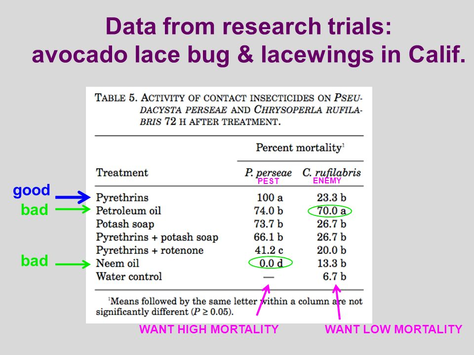 Data from research trials: avocado lace bug & lacewings in Calif.