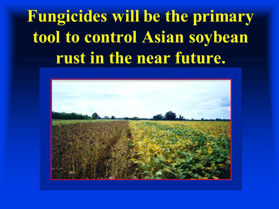 Fungicides will be the primary tool to control Asian soybean rust in the near future.