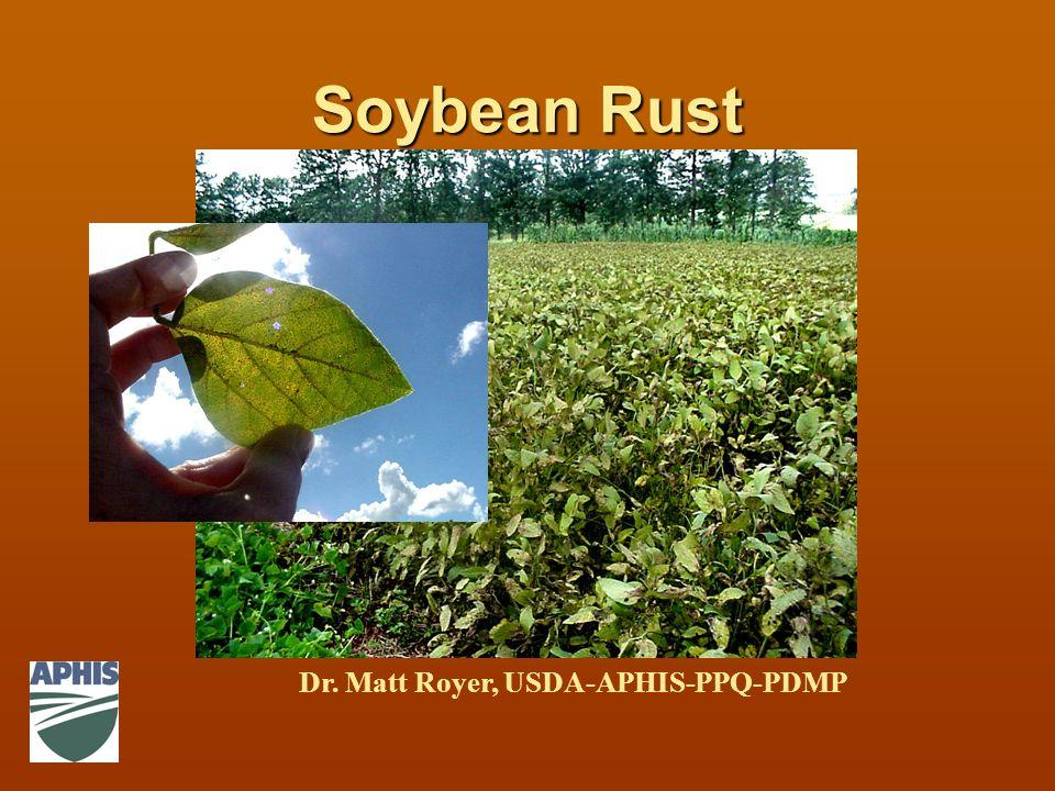 Soybean Rust Dr. Matt Royer, USDA-APHIS-PPQ-PDMP