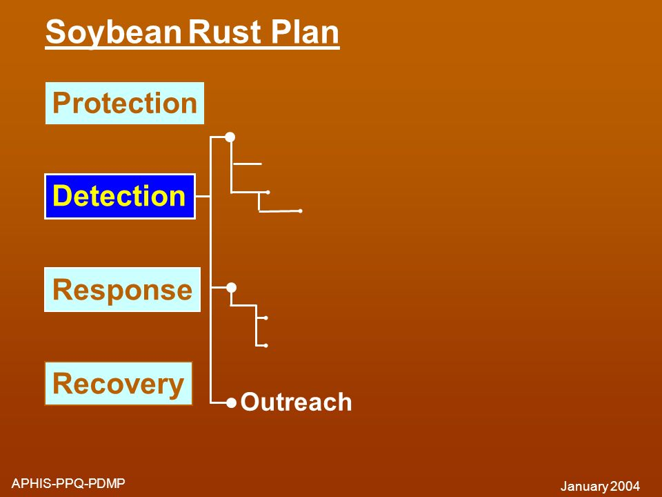Soybean Rust Plan APHIS-PPQ-PDMP January 2004 Response Recovery Outreach Protection Detection
