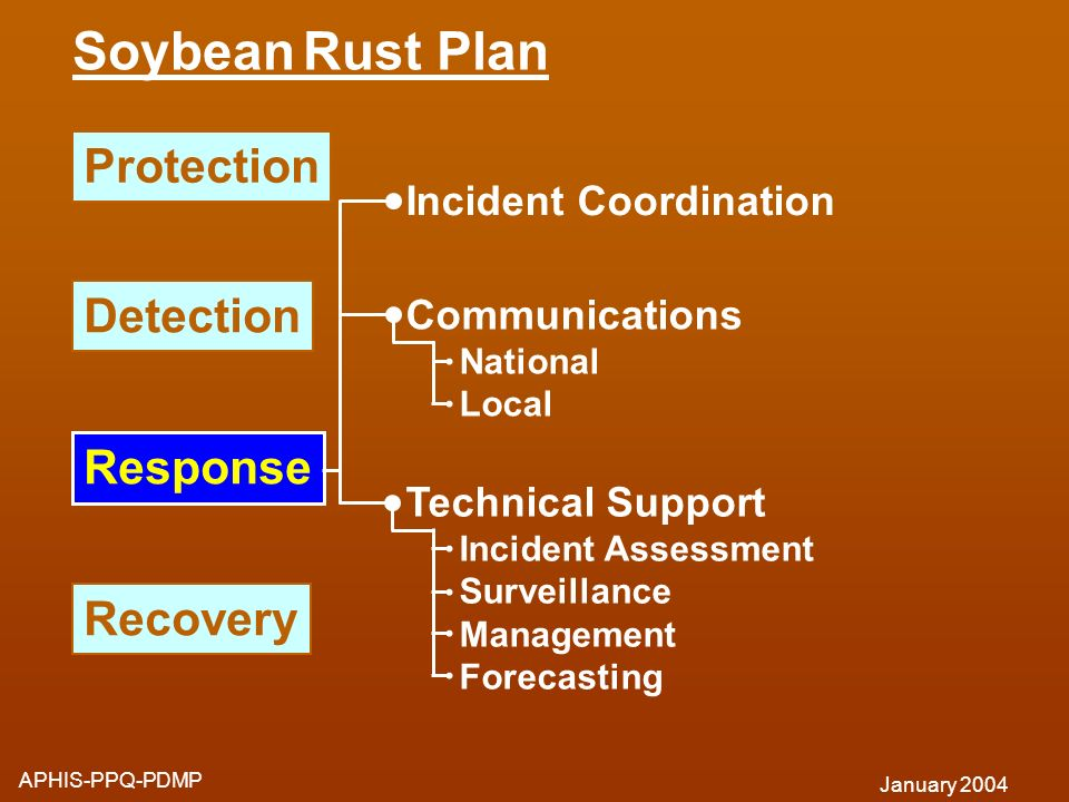 Response Protection Detection Recovery Incident Coordination Communications National Local Technical Support Incident Assessment Surveillance Manageme