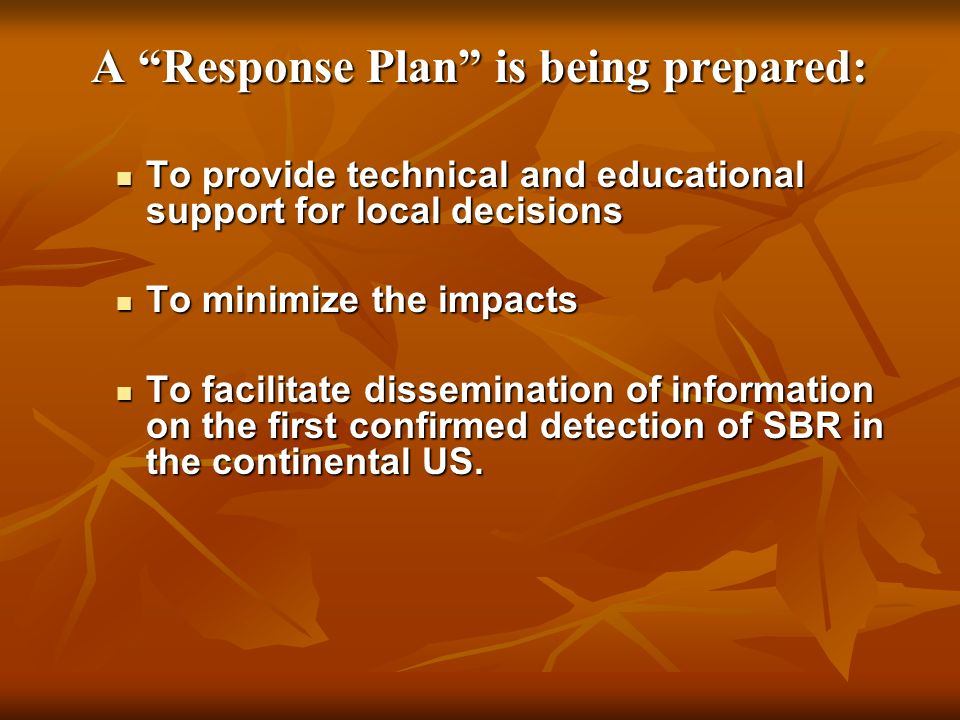 A Response Plan is being prepared: To provide technical and educational support for local decisions To provide technical and educational support for l