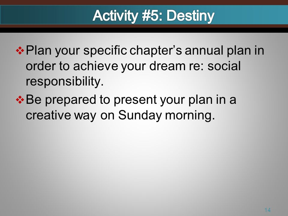 Plan your specific chapters annual plan in order to achieve your dream re: social responsibility. Be prepared to present your plan in a creative way o