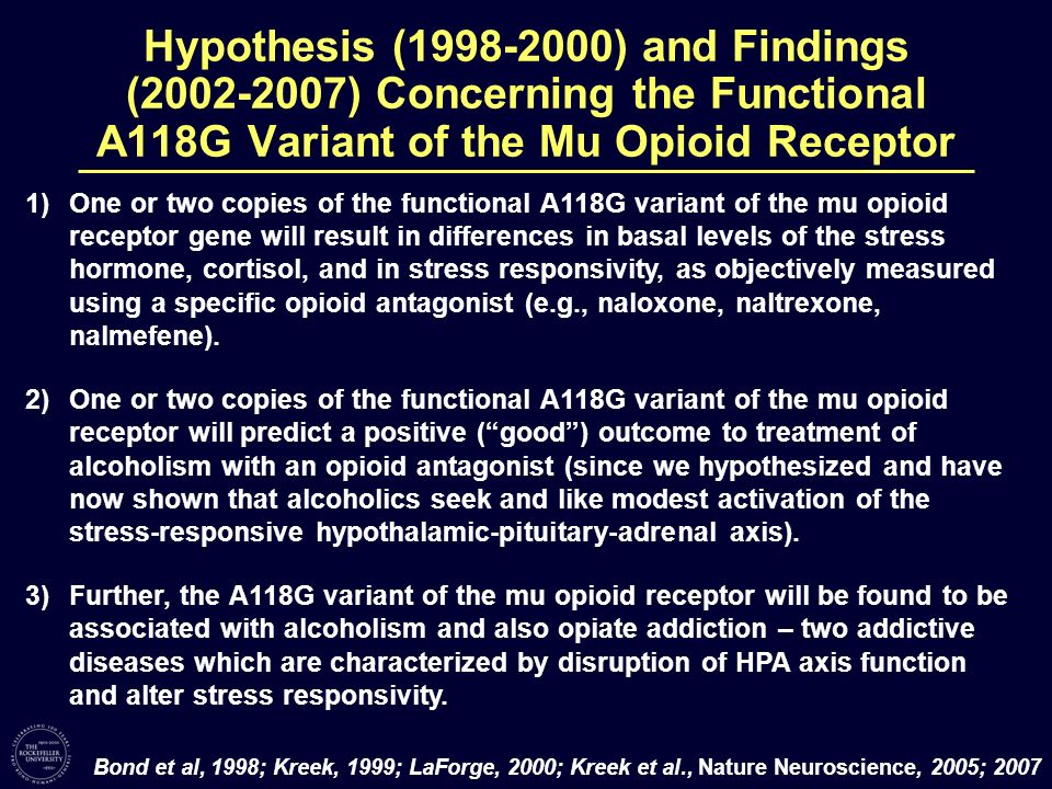 Hypothesis (1998-2000) and Findings (2002-2007) Concerning the Functional A118G Variant of the Mu Opioid Receptor 1)One or two copies of the functiona