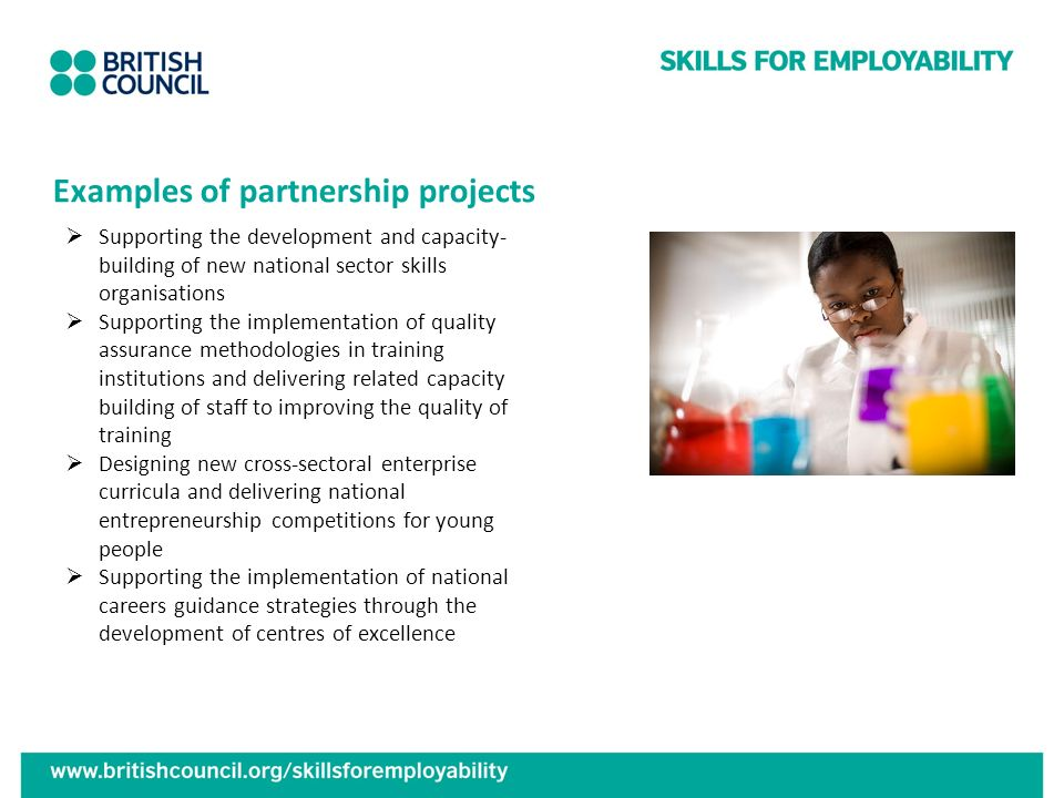 Examples of partnership projects Supporting the development and capacity- building of new national sector skills organisations Supporting the implemen