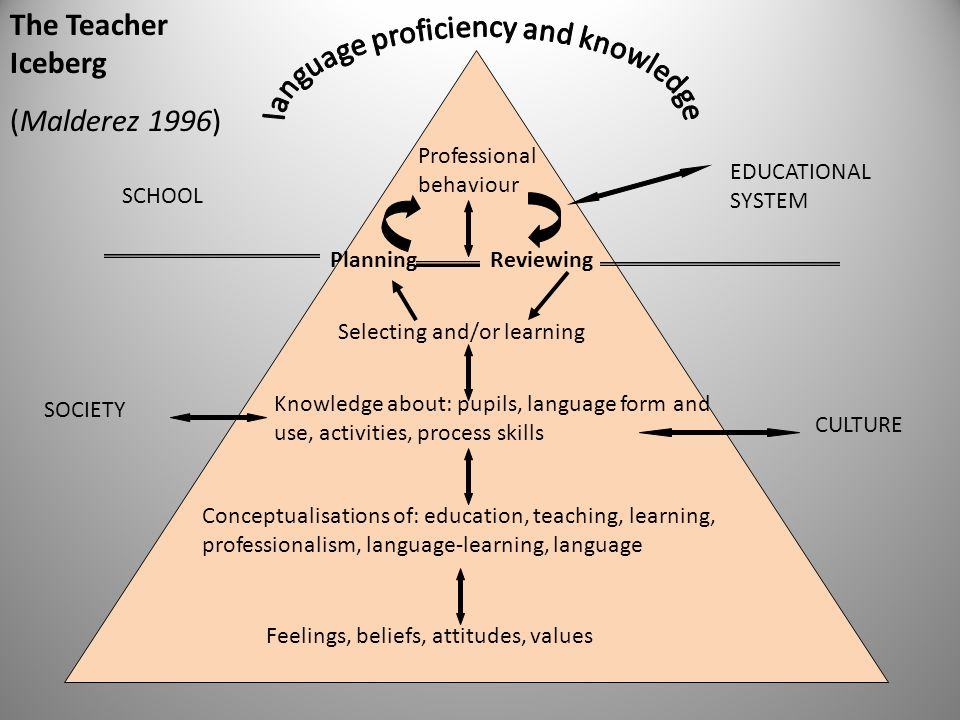 Professional behaviour Selecting and/or learning Knowledge about: pupils, language form and use, activities, process skills Conceptualisations of: edu