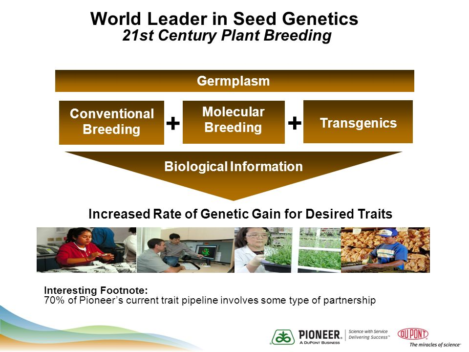 Increased Rate of Genetic Gain for Desired Traits Biological Information Conventional Breeding Molecular Breeding Transgenics + Germplasm + World Leader in Seed Genetics 21st Century Plant Breeding Interesting Footnote: 70% of Pioneers current trait pipeline involves some type of partnership