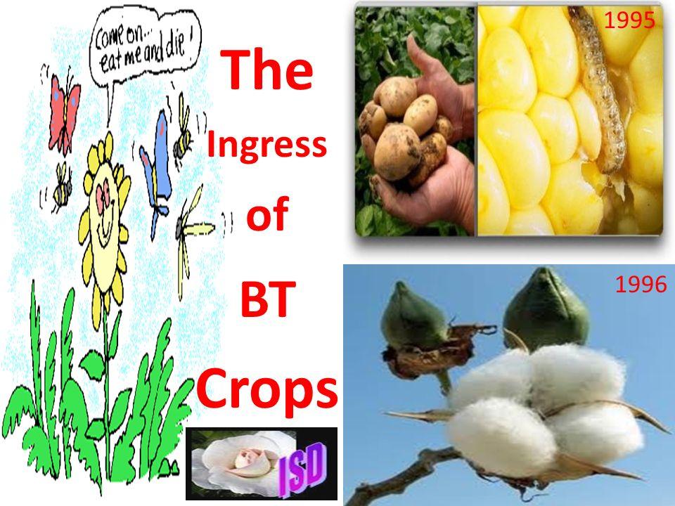 CROP Alfa Broccoli Cabbage Canola Corn Cotton Eggplant Poplar Potato Rice Soybean Tobacco Tomato TOXIN cry1Ca cry1C cry1Ab cry1Ac cry1Ab, cry9c cry1Ab