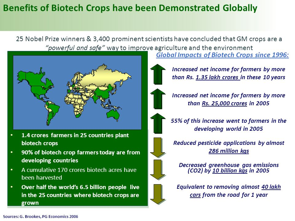 There Are Number of Biotech Food Crops Planted Around The World CropCountry PlantingBiotech Trait Sweet PepperChinaVirus tolerance PapayaChina, USAVirus tolerance TomatoChina, USADelayed ripening SugarbeetUSA, CanadaHerbicide tolerance SquashUSAVirus tolerance Maize17 countriesInsect & Herbicide tolerance Soybean10 countriesHerbicide tolerance Canola4 countriesHerbicide tolerance Six biotech crops are planted in China currently and 3 of them are food crops China has announced commercial Bt Rice cultivation within one year China currently spends the highest amount in the world on agricultural biotech research Source: ISAAA, 2008