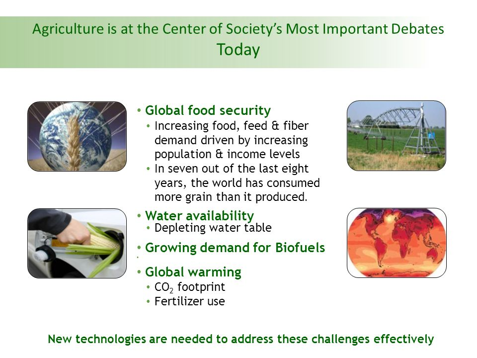 There Are Number of Biotech Food Crops Planted Around The World CropCountry PlantingBiotech Trait Sweet PepperChinaVirus tolerance PapayaChina, USAVirus tolerance TomatoChina, USADelayed ripening SugarbeetUSA, CanadaHerbicide tolerance SquashUSAVirus tolerance Maize17 countriesInsect & Herbicide tolerance Soybean10 countriesHerbicide tolerance Canola4 countriesHerbicide tolerance Six biotech crops are planted in China currently, 3 are food crops China is committed to commercialise Bt Rice in one year China currently spends the highest amount in the world on agricultural biotech research Source: ISAAA, 2008