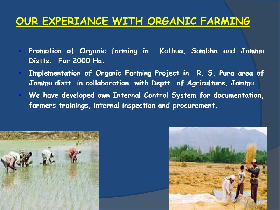 OUR EXPERIANCE WITH ORGANIC FARMING Promotion of Organic farming in Kathua, Sambha and Jammu Distts. For 2000 Ha. Implementation of Organic Farming Pr