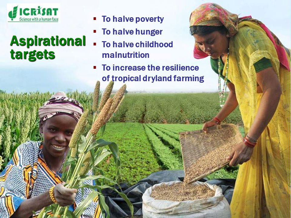 To halve poverty To halve hunger To halve childhood malnutrition To increase the resilience of tropical dryland farming Aspirational targets