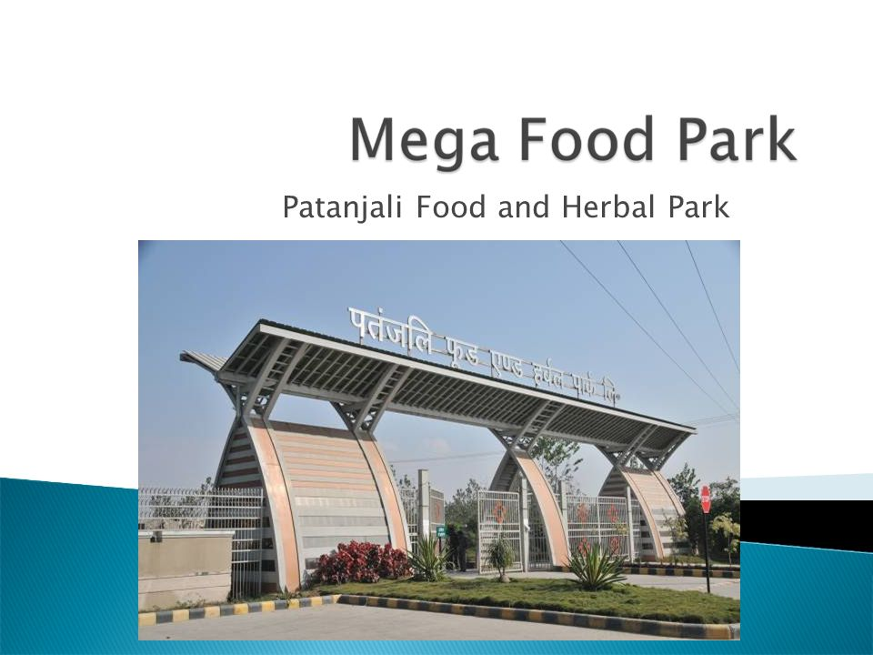 Patanjali Food and Herbal Park