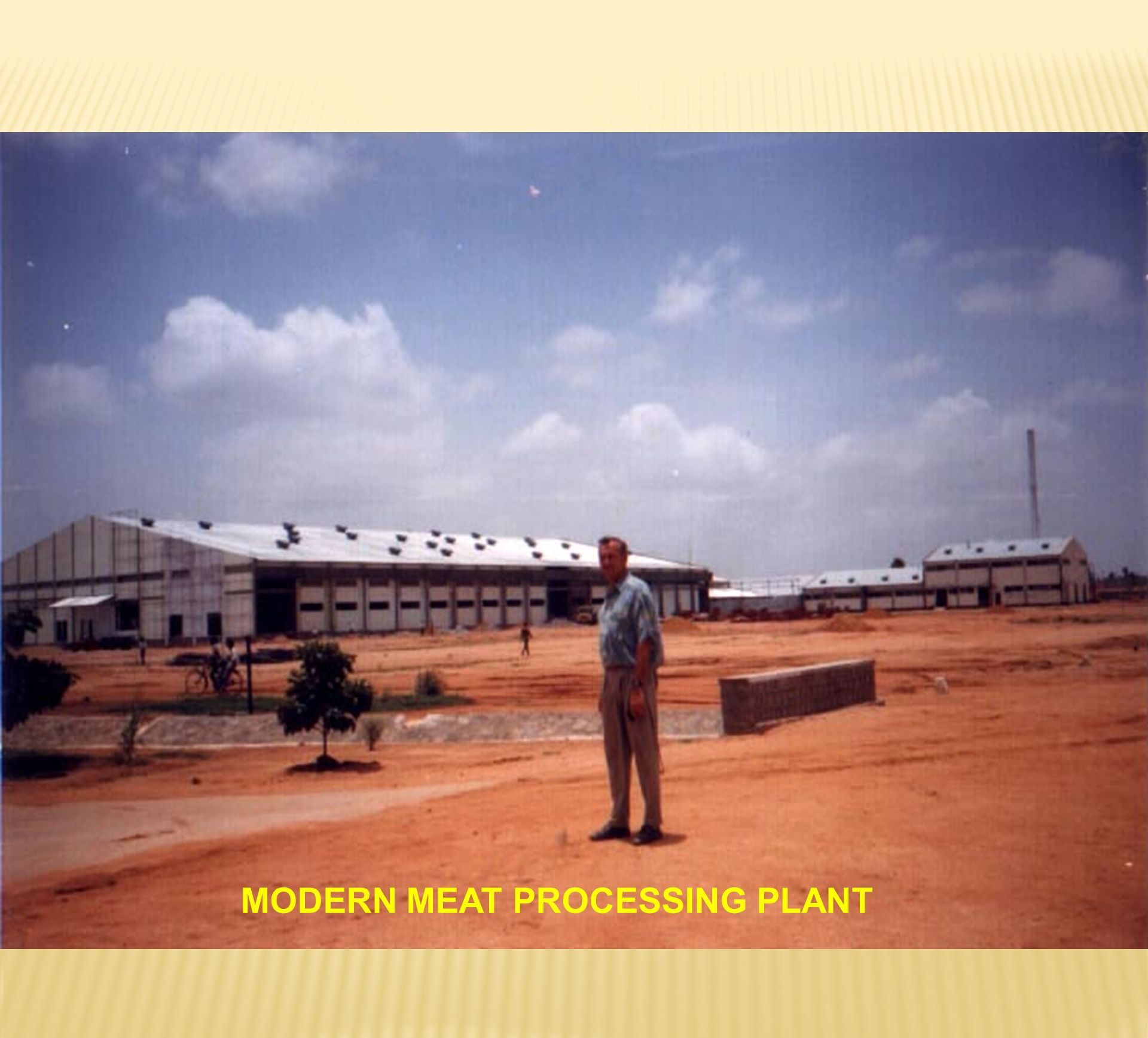 MODERN MEAT PROCESSING PLANT