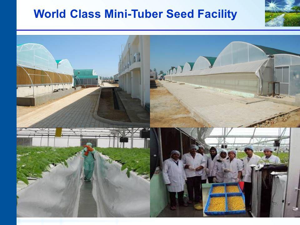World Class Mini-Tuber Seed Facility