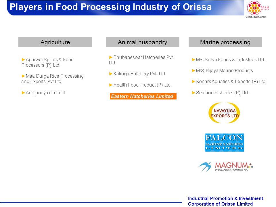 Page 13 Industrial Promotion & Investment Corporation of Orissa Limited AgricultureAnimal husbandryMarine processing M/s Suryo Foods & Industries Ltd.