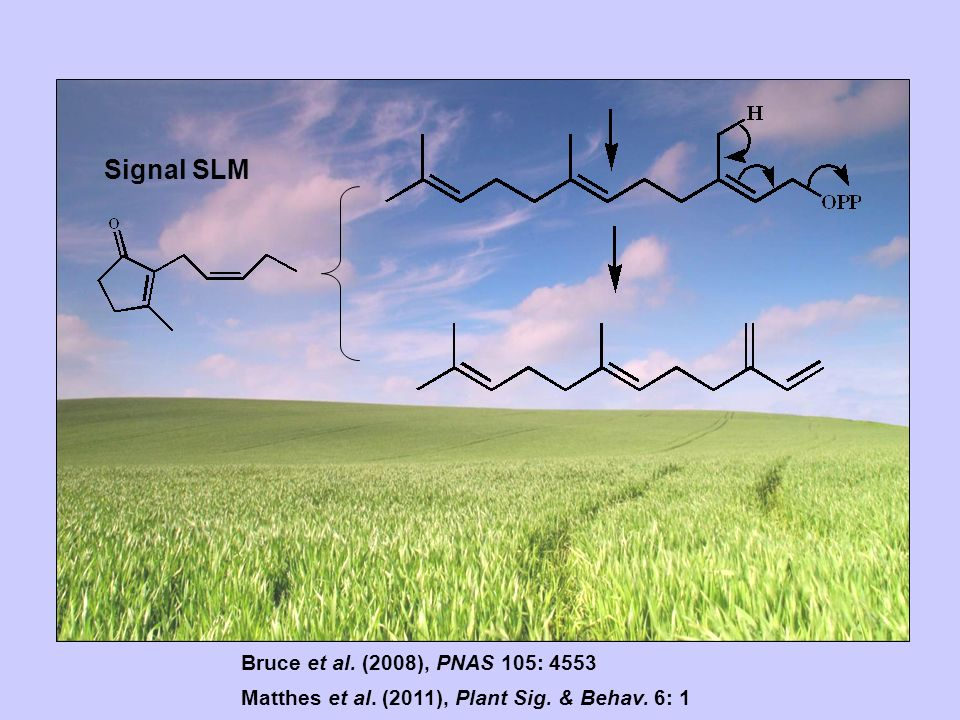 Bruce et al. (2008), PNAS 105: 4553 Matthes et al. (2011), Plant Sig. & Behav. 6: 1