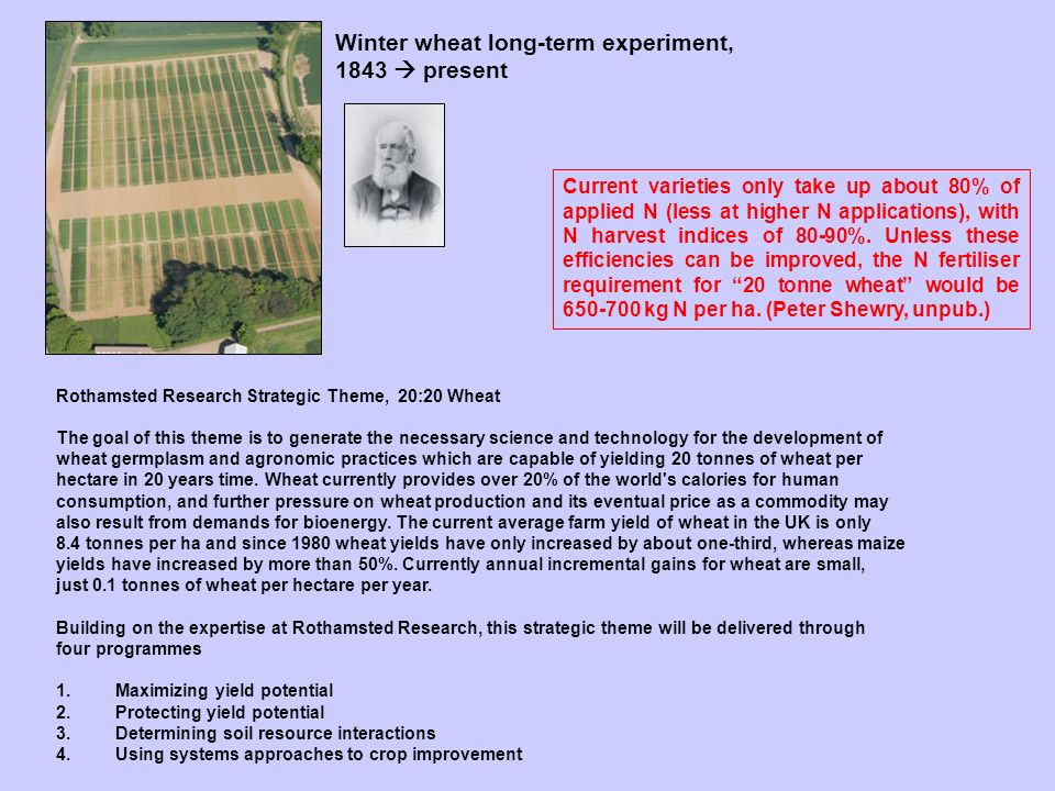 Rothamsted Research Strategic Theme, 20:20 Wheat The goal of this theme is to generate the necessary science and technology for the development of wheat germplasm and agronomic practices which are capable of yielding 20 tonnes of wheat per hectare in 20 years time.