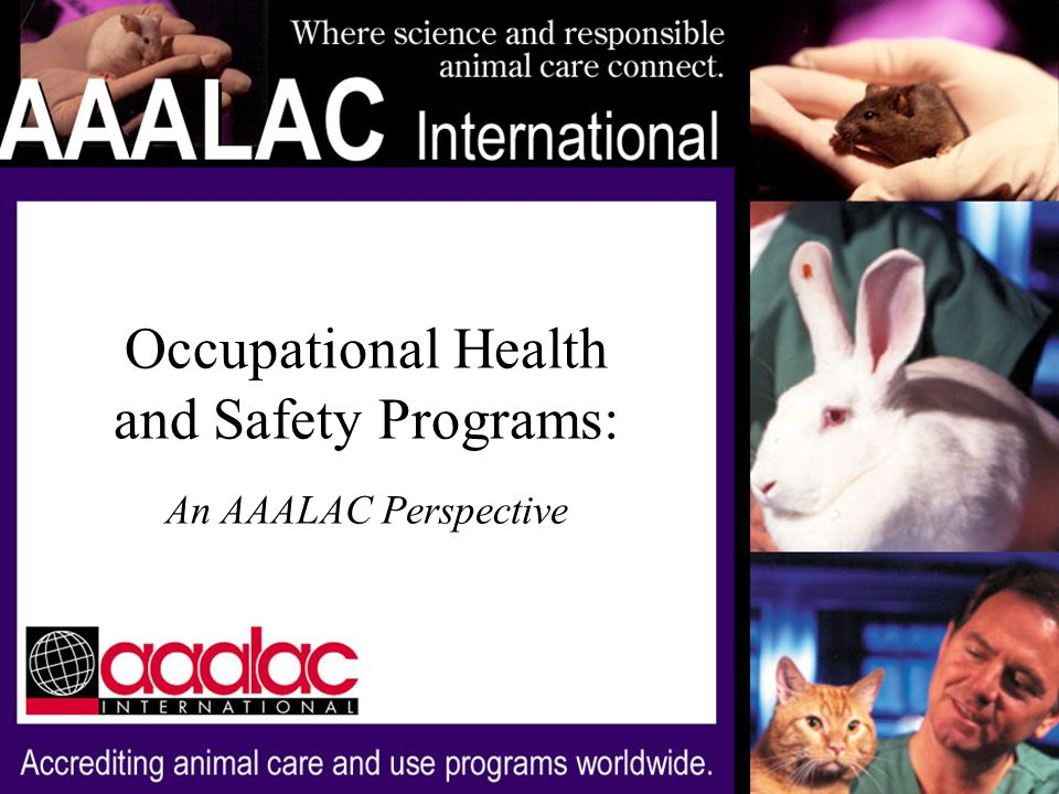 Occupational Health and Safety of Personnel Elements of an OHS program: Deficiencies identified by AAALAC