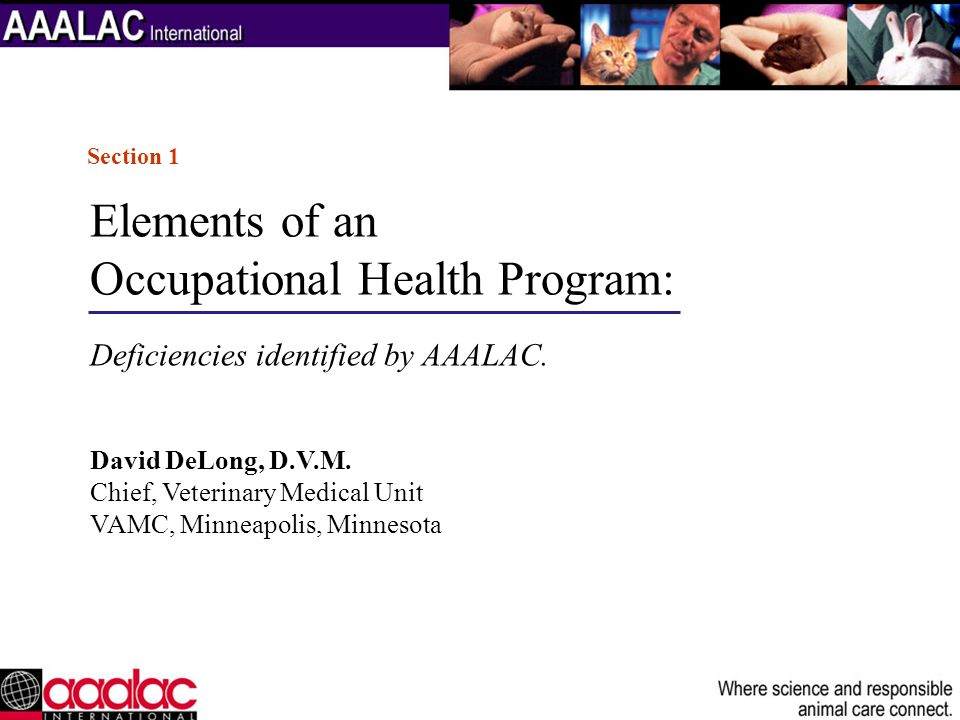 Components of one allergy program: Screening Management of the sensitized patient Management of the allergic and or asthmatic patient Periodic pulmonary function testing Emmunotherapy.