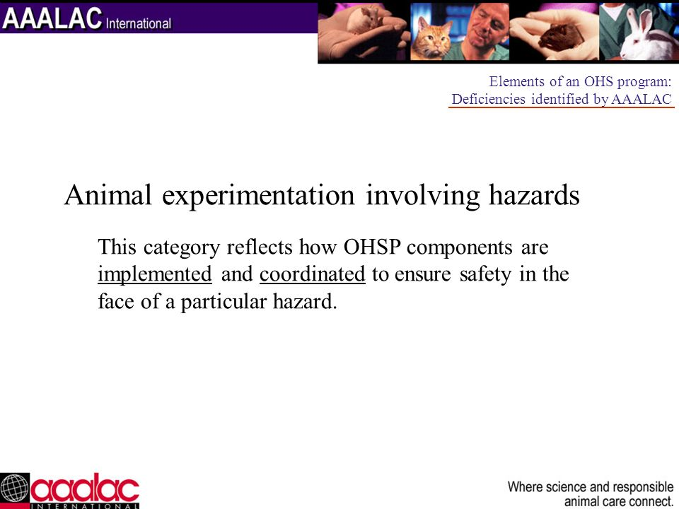 Animal experimentation involving hazards This category reflects how OHSP components are implemented and coordinated to ensure safety in the face of a